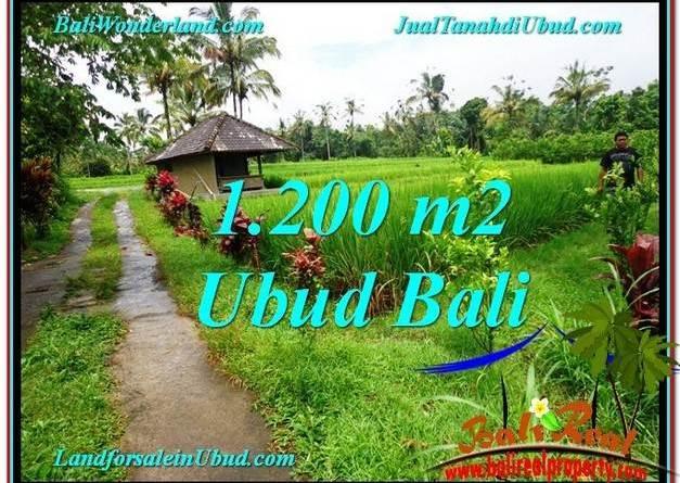 Exotic UBUD BALI 1,200 m2 LAND FOR SALE TJUB559