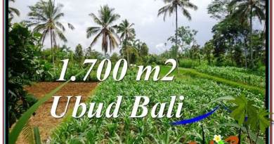 Magnificent 1,700 m2 LAND SALE IN UBUD BALI TJUB560