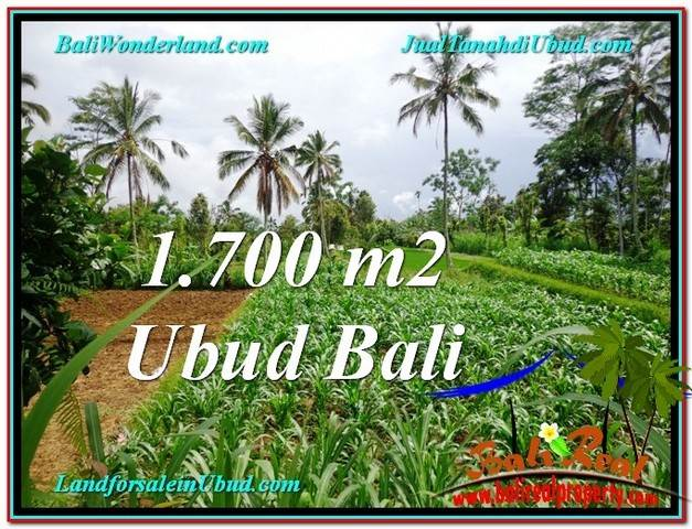 1,700 m2 LAND FOR SALE IN UBUD BALI TJUB560