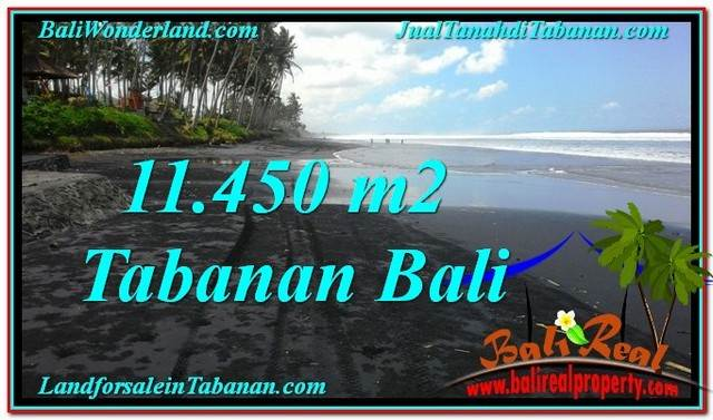 Exotic 11,450 m2 LAND FOR SALE IN TABANAN BALI TJTB291