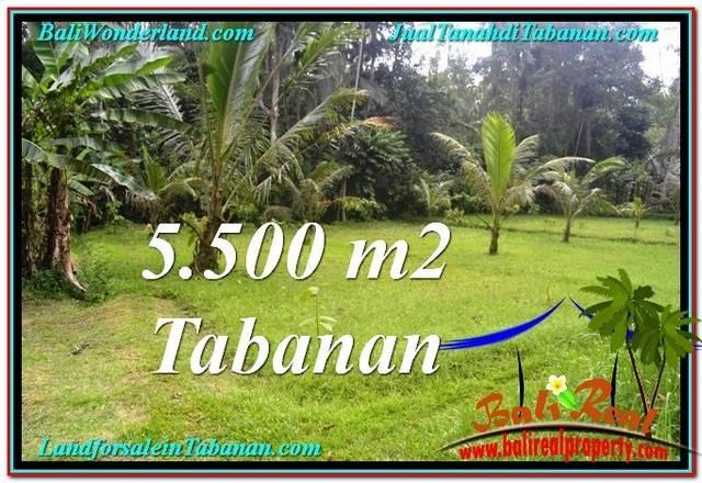 FOR SALE Exotic PROPERTY 5,500 m2 LAND IN TABANAN BALI TJTB295