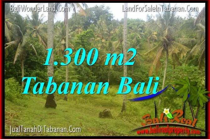 Magnificent PROPERTY 1,300 m2 LAND IN TABANAN BALI FOR SALE TJTB314