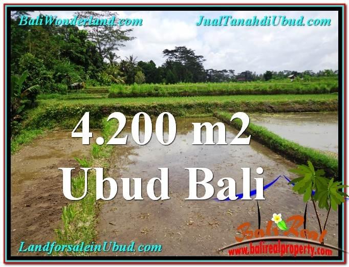 4,200 m2 LAND FOR SALE IN UBUD BALI TJUB561