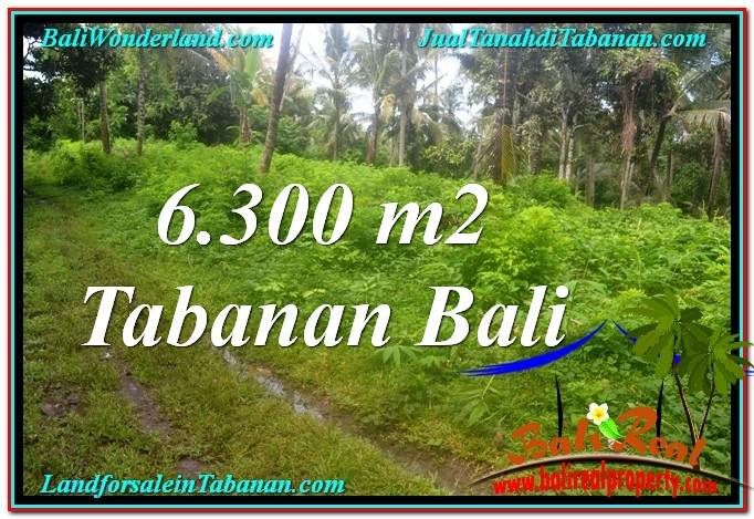 Exotic 6,300 m2 LAND IN TABANAN FOR SALE TJTB313