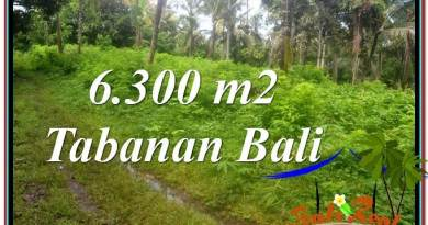 Exotic PROPERTY LAND FOR SALE IN TABANAN BALI TJTB313