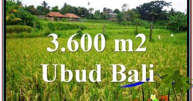 Magnificent 3,600 m2 LAND IN UBUD BALI FOR SALE TJUB566
