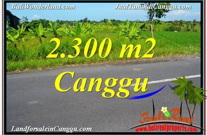 Affordable PROPERTY 2,300 m2 LAND FOR SALE IN CANGGU BALI TJCG209