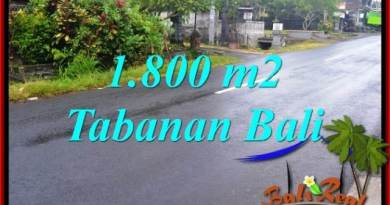FOR SALE Exotic LAND IN Tabanan Kota BALI TJTB321
