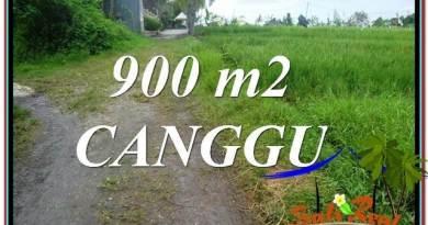 Magnificent PROPERTY Canggu Batu Bolong BALI LAND FOR SALE TJCG215