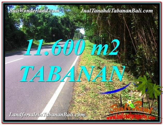 FOR SALE Magnificent PROPERTY LAND IN Tabanan Selemadeg TJTB327