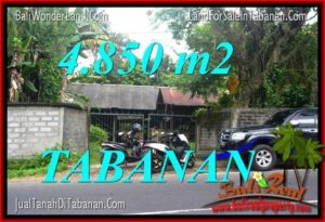 Magnificent Tabanan Bedugul 4,850 m2 LAND FOR SALE TJTB330