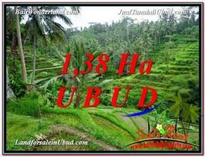 FOR SALE Affordable 13,800 m2 LAND IN UBUD TJUB590