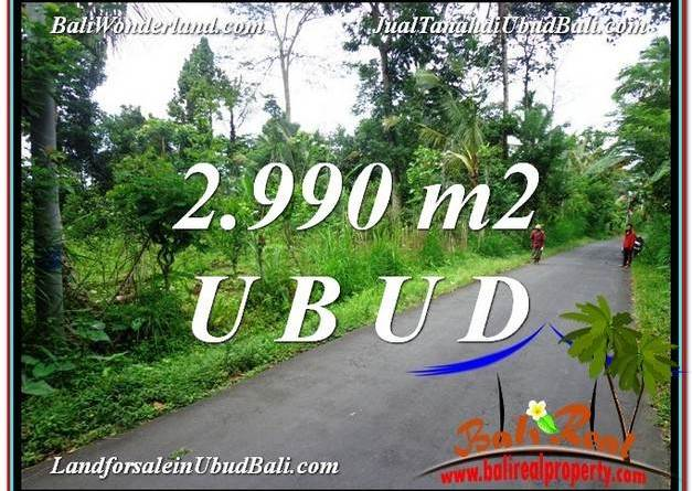 Exotic 2,990 m2 LAND SALE IN UBUD BALI TJUB591