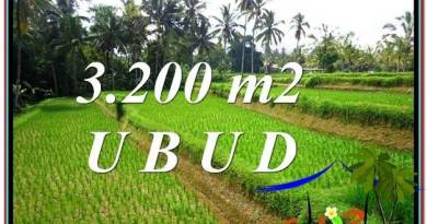 Magnificent 3,200 m2 LAND IN UBUD BALI FOR SALE TJUB594