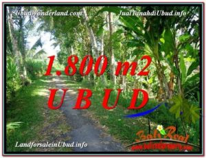 Affordable PROPERTY 1,800 m2 LAND IN Ubud Payangan FOR SALE TJUB597