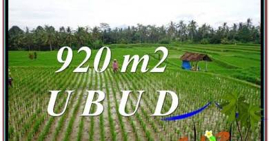 FOR SALE Affordable LAND IN Ubud Payangan BALI TJUB575