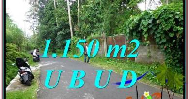 Affordable LAND IN Ubud Pejeng BALI FOR SALE TJUB576