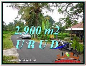 2,900 m2 LAND SALE IN UBUD TJUB586