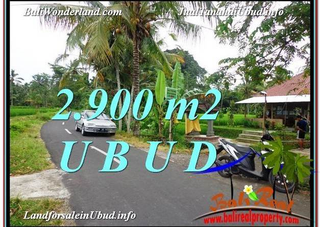 2,900 m2 LAND SALE IN UBUD TJUB586