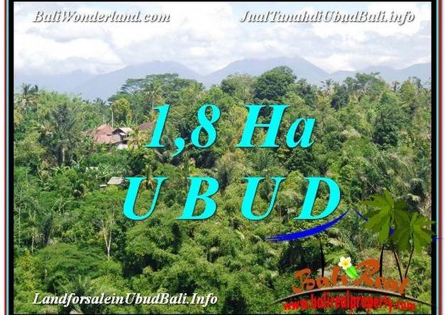 Affordable UBUD BALI 18,000 m2 LAND FOR SALE TJUB589