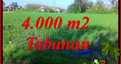 Exotic PROPERTY 4,000 m2 LAND IN TABANAN FOR SALE TJTB352