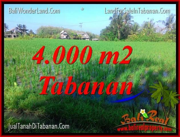 Exotic 4,000 m2 LAND SALE IN Tabanan Selemadeg BALI TJTB352