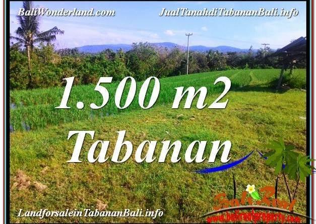 Affordable 1,500 m2 LAND SALE IN TABANAN BALI TJTB353