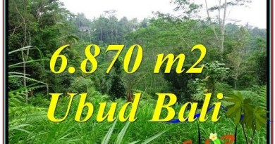 Affordable PROPERTY 6,870 m2 LAND IN UBUD BALI FOR SALE TJUB602