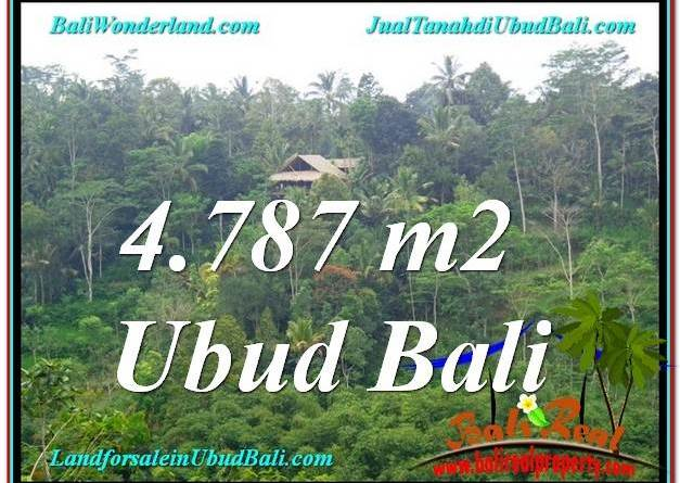 FOR SALE Beautiful PROPERTY LAND IN UBUD TJUB603