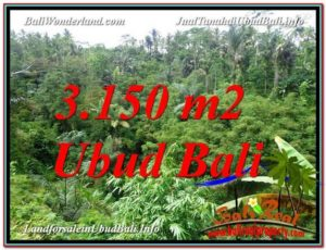 FOR SALE Beautiful PROPERTY 3,150 m2 LAND IN UBUD BALI TJUB608