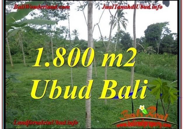 Affordable LAND FOR SALE IN Ubud Tegalalang BALI TJUB610