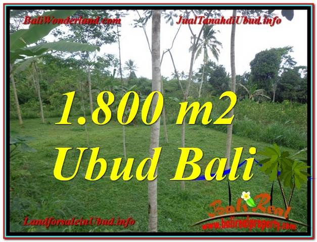 Magnificent PROPERTY 1,800 m2 LAND SALE IN UBUD BALI TJUB610
