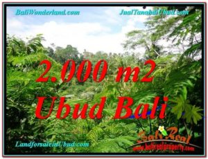 Magnificent 2,000 m2 LAND SALE IN UBUD BALI TJUB611
