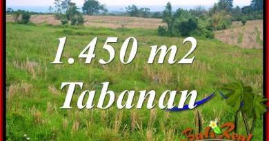 Affordable 1,450 m2 LAND SALE IN TABANAN BALI TJTB343