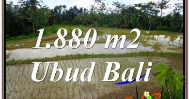 FOR SALE Beautiful 1,880 m2 LAND IN UBUD BALI TJUB613