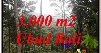Exotic PROPERTY 3,000 m2 LAND IN Ubud Payangan FOR SALE TJUB617