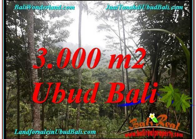 Exotic PROPERTY 3,000 m2 LAND IN Ubud Payangan FOR SALE TJUB617