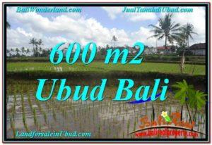 Beautiful PROPERTY 600 m2 LAND SALE IN Ubud Pejeng TJUB621