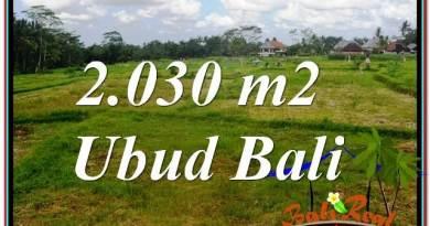 LAND SALE IN Ubud Tegalalang BALI TJUB623