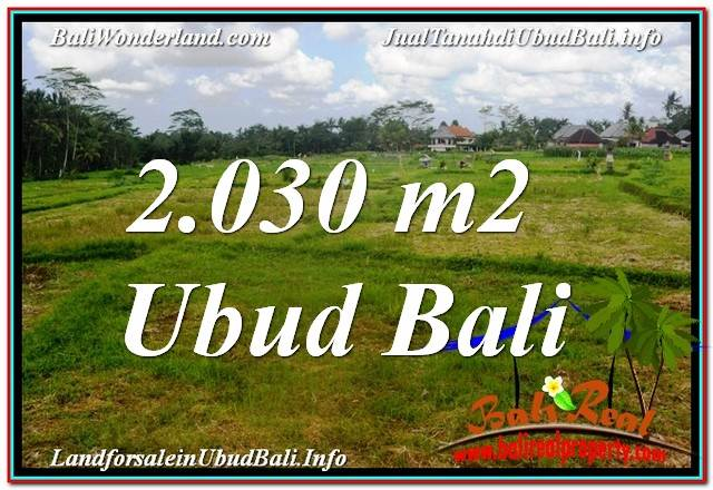 Exotic PROPERTY 2,030 m2 LAND IN Ubud Tegalalang FOR SALE TJUB623