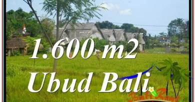 Exotic PROPERTY LAND SALE IN UBUD TJUB633