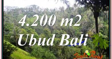 4,200 m2 LAND IN UBUD BALI FOR SALE TJUB639