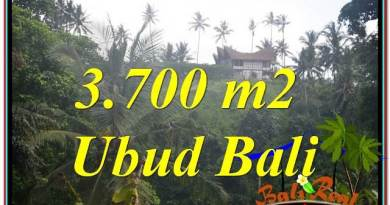 3,700 m2 LAND SALE IN UBUD TJUB640