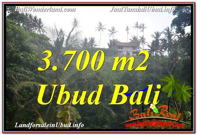 Beautiful PROPERTY 3,700 m2 LAND FOR SALE IN Ubud Center BALI TJUB640