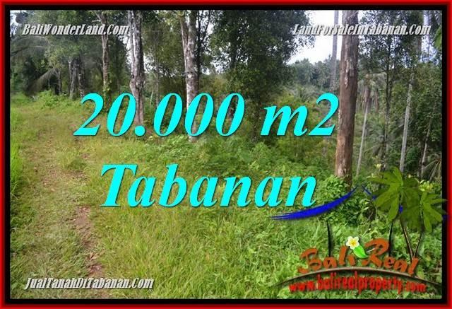 Exotic PROPERTY 20,000 m2 LAND FOR SALE IN Tabanan Selemadeg Timur BALI TJTB365