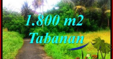 Magnificent PROPERTY TABANAN 1,850 m2 LAND FOR SALE TJTB357