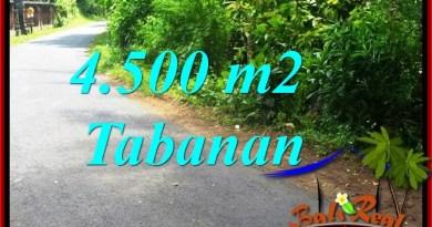 Exotic PROPERTY LAND FOR SALE IN TABANAN BALI TJTB380