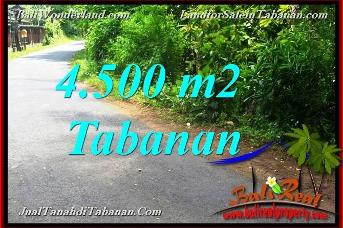 Exotic PROPERTY LAND FOR SALE IN TABANAN BALI TJTB380