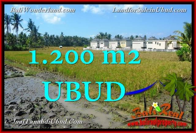 FOR SALE Beautiful 1,200 m2 LAND IN UBUD BALI TJUB663