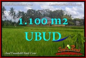 FOR SALE Beautiful PROPERTY LAND IN UBUD TJUB651